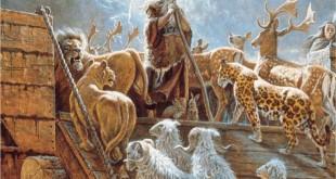 Quantos Animais Caberiam na Arca de Noé