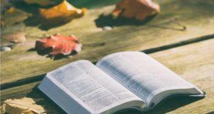 Lição 1 As Obras da Carne e o Fruto do Espírito