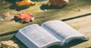 Lição 12 Sabedoria Divina Para a Tomada de Decisões
