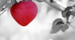 O que é Benignidade e o que significa