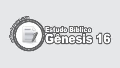 Photo of Estudo Bíblico de Gênesis 16