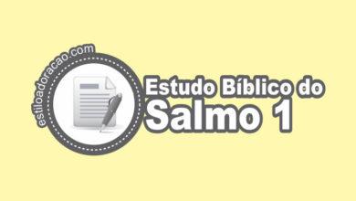 Photo of Estudo Bíblico do Salmo 1