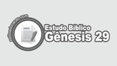 Photo of Estudo Bíblico de Gênesis 29