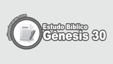 Photo of Estudo Bíblico de Gênesis 30