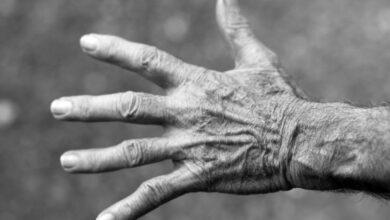 Photo of A Velhice de Davi: Como Foi a Velhice e Morte de Davi?