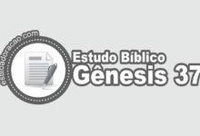 Photo of Estudo Bíblico de Gênesis 37