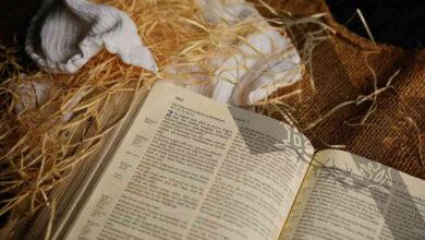 Photo of Jesus é Perfeito: Qual o Significado da Perfeição de Jesus?