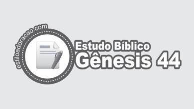 Photo of Estudo Bíblico de Gênesis 44