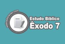 Photo of Estudo Bíblico de Êxodo 7
