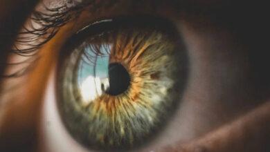 Photo of O Que é Ser Guardado Como a Menina dos Olhos de Deus?