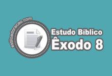 Photo of Estudo Bíblico de Êxodo 8