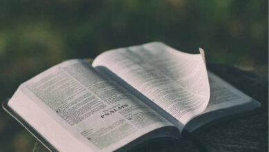 Photo of Qual o Maior e o Menor Livro da Bíblia?