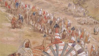 Photo of O Que Significa a Tribo de Naftali na Bíblia?